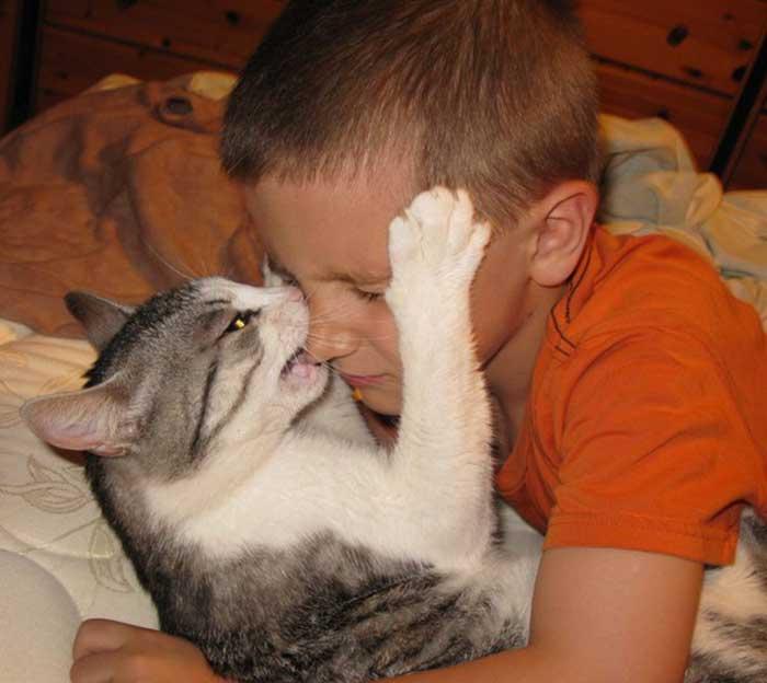 Кошка прыгает на лицо, что делать если кошка прыгает на лицо и кусается