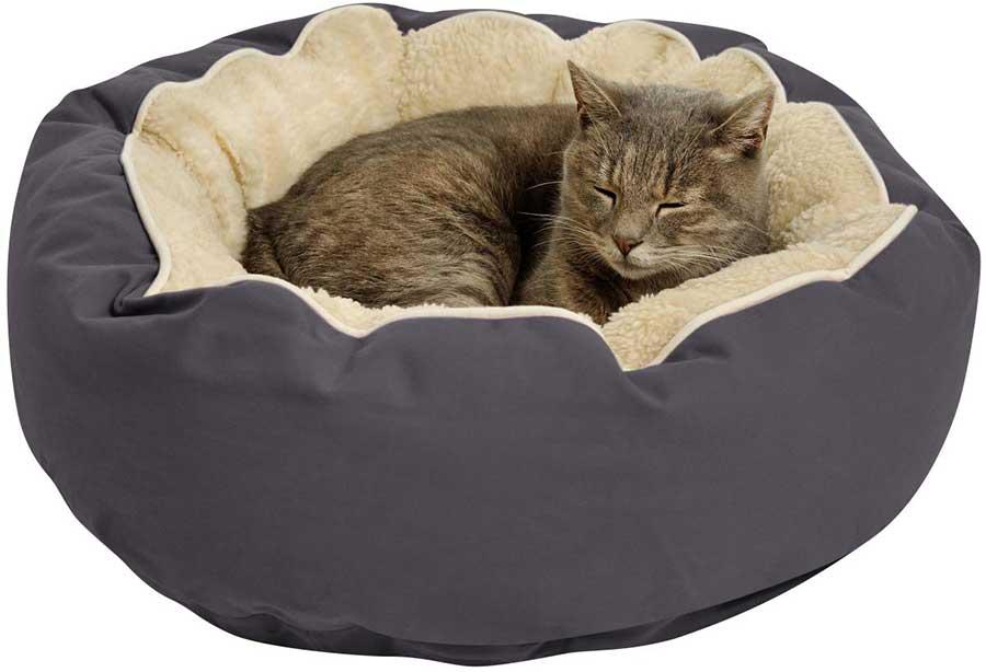 Лежанка для кошек, как сделать правильный выбор