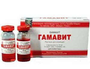gamavit_001
